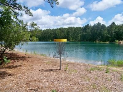 A disc golf net near a lake.